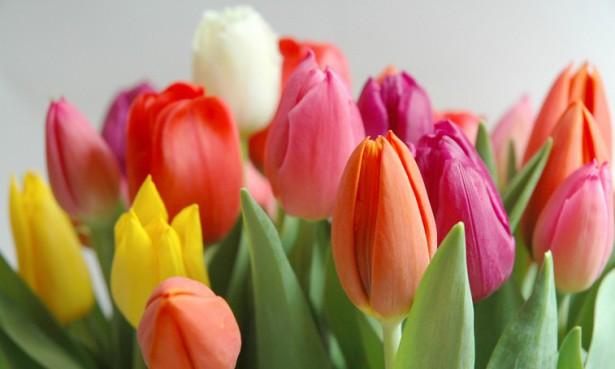 Как поздравить женщин 8 марта на работе.