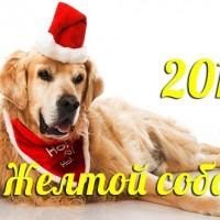 Как украсить свой дом на Новый год 2018: простые советы