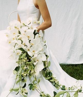 Изобр по > Белая Орхидея Букет