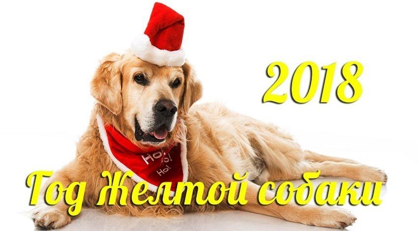 Подарки на новый год! Идеи для всех.