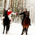 horse-gallery-winter