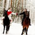 horse-gallery-winter